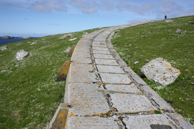 Detail of trackway.