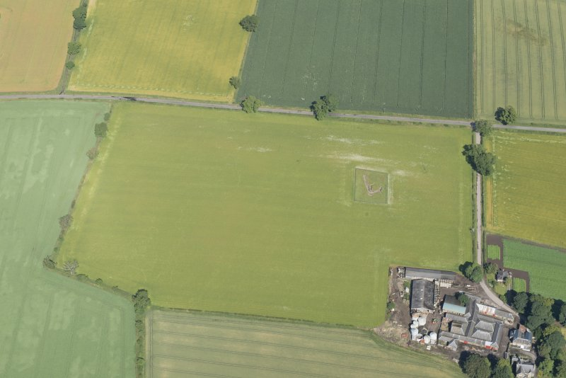 Oblique aerial view of the souterrain at Carlungie with the farmstead adjacent, looking NNW.