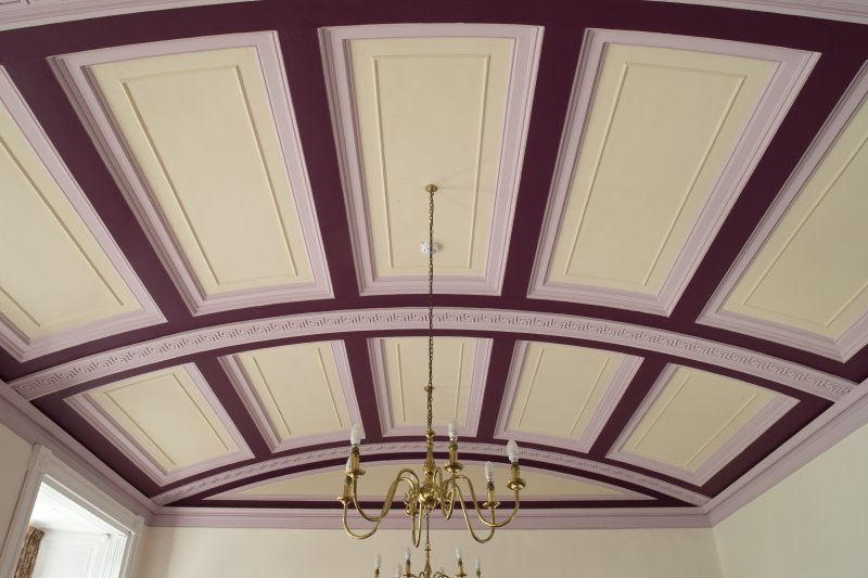 1st floor. Dining room ceiling.