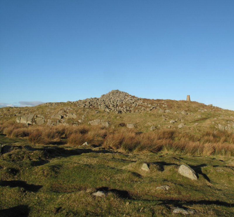 Drumcarrow Craig broch; general view from south.