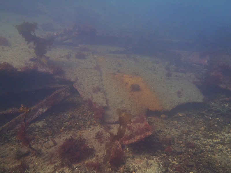 View of debris field including hull plating/fragments on steamship Gartmore