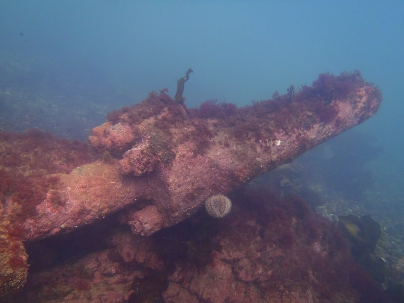 View of miscellaenous machinery shaft on steamship Gartmore