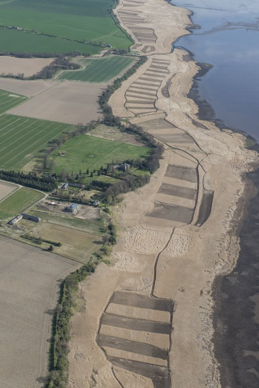 Oblique aerial view of the reed beds on the River Tay between Seaside House and Powgavie, looking NE.
