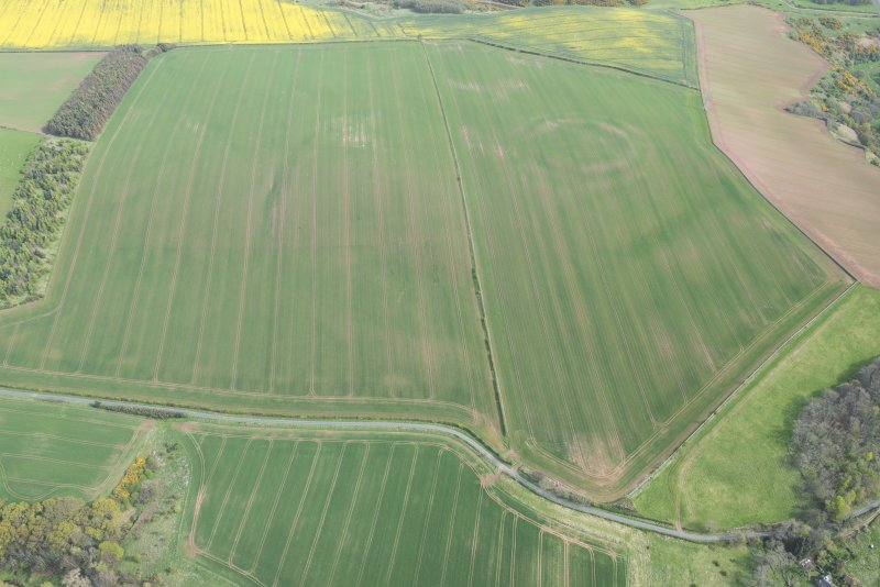 Oblique aerial view of the cropmarks of the fort and field boundaries, looking SE.