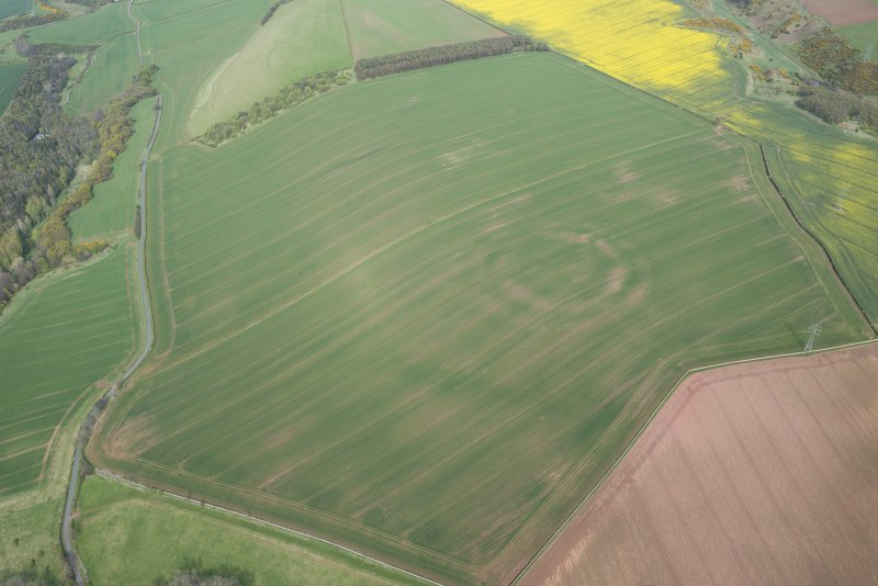 Oblique aerial view of the cropmarks of the fort and field boundaries, looking E.