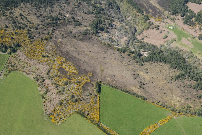 Oblique aerial view of the field system and hut circles at Kinrive Wood, looking NW.