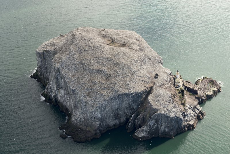 Oblique aerial view of the Bass Rock, looking E.