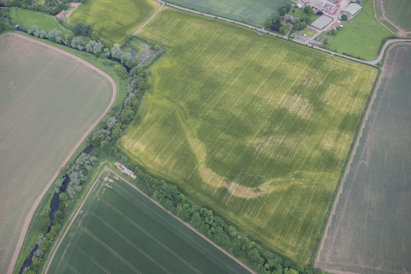 Oblique aerial view of the cropmarks of the Preston Mains cursus, looking NNW.