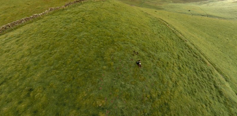 Oblique aerial view of Turnhouse Hill fort looking west. Detail of interior centred on well-preserved ring-ditch house.