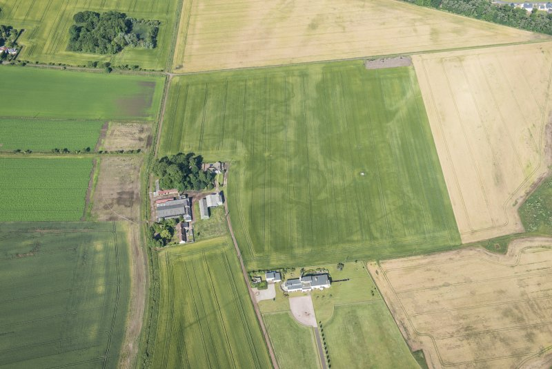 Oblique aerial view of the cropmarks of the field boundaries, looking W.