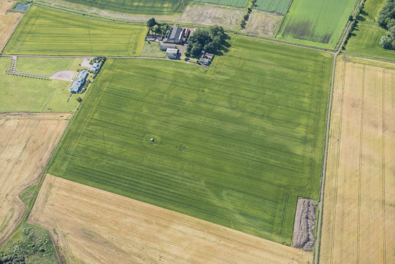Oblique aerial view of the cropmarks of the field boundaries, looking SSE.
