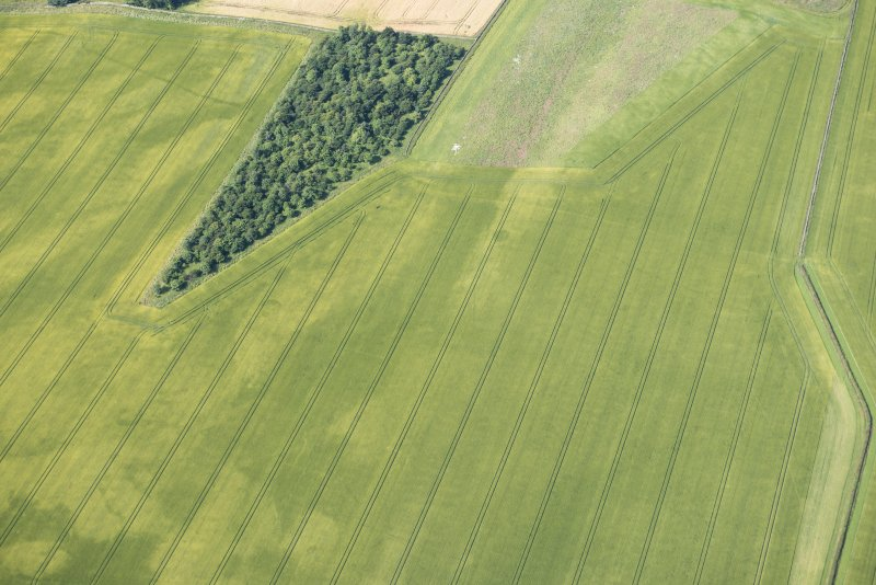 Oblique aerial view of the cropmarks of the ring ditch houses and the pit-defined boundary, looking WSW.