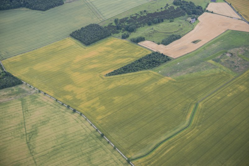 Oblique aerial view of the cropmarks of the ring ditch and the pit-defined boundary system with the fort beyond, looking SSW.