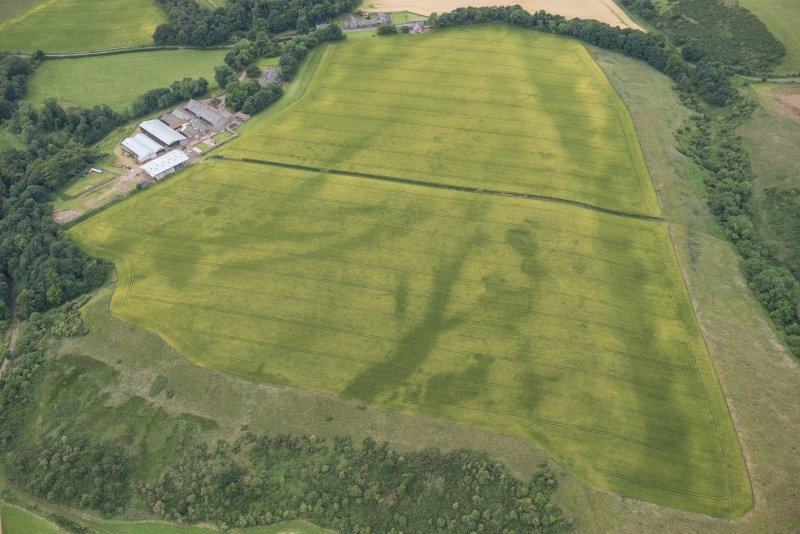 Oblique aerial view of the cropmarks of the pits, track and enclosure, looking WSW.