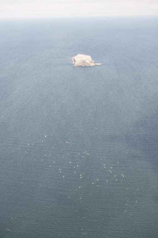 Oblique aerial view of the flotilla with the Bass Rock beyond, looking ENE.
