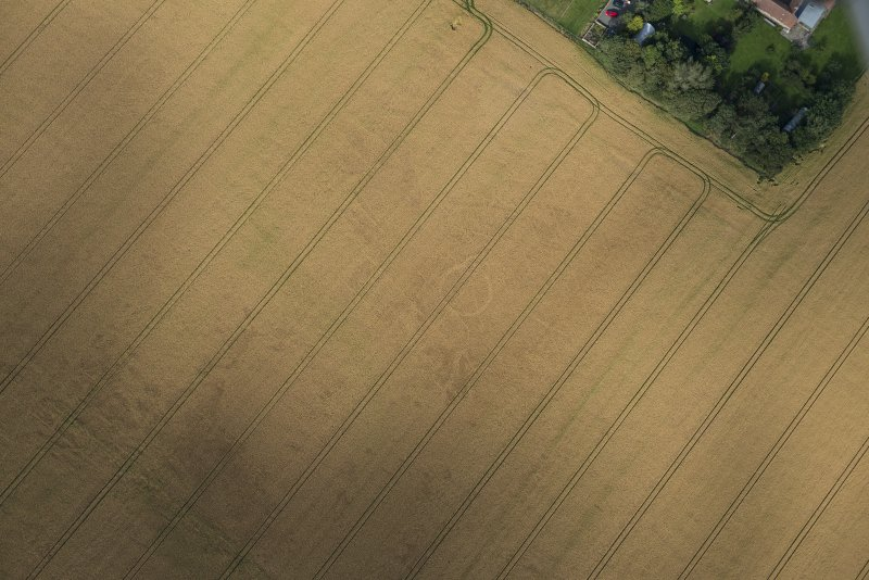 Oblique aerial view of the cropmarks of the round house, looking NE.