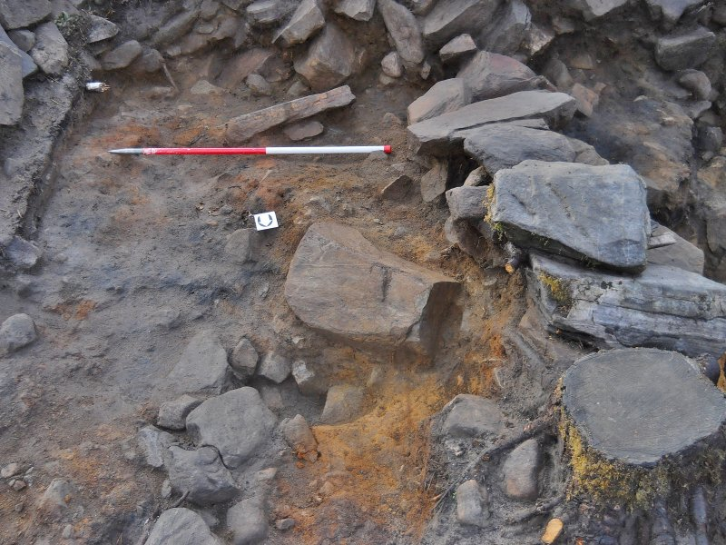 Possible wall 110 with ash and charcoal spread surrounding, Comar Wood Dun, Cannich, Strathglass