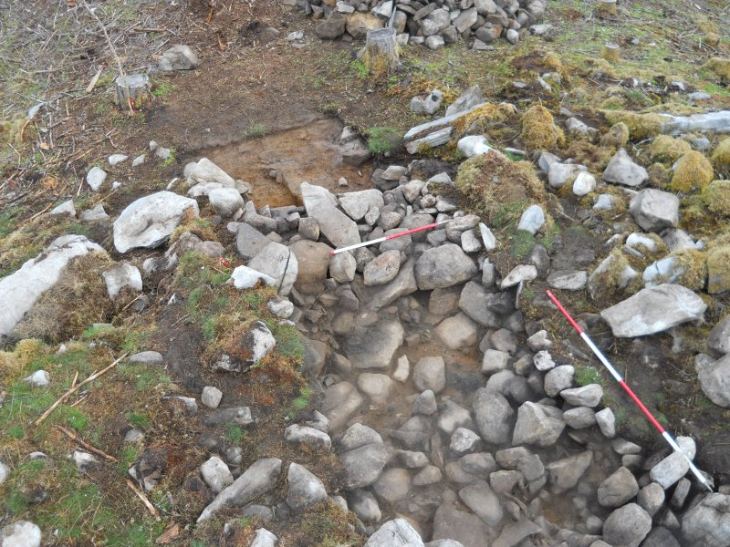 High-pole photo over the north end of Trench 2, showing what appears to be the best surviving section of the outer wall in the centre of the image, Comar Wood Dun, Cannich, Strathglass