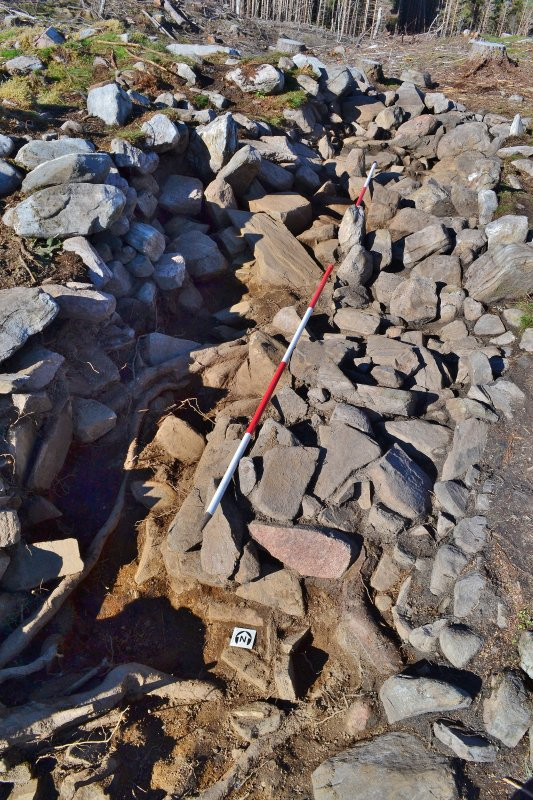 Mid-excavation image - after section through west half of trench, showing exposed larger stone, Comar Wood Dun, Cannich, Strathglass