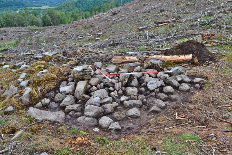 Mid-excavation photo of Trench 3 enclosure wall, after initial clean-back, Comar Wood Dun, Cannich, Strathglass
