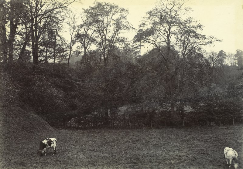 General view of grounds, The Peel, Busby