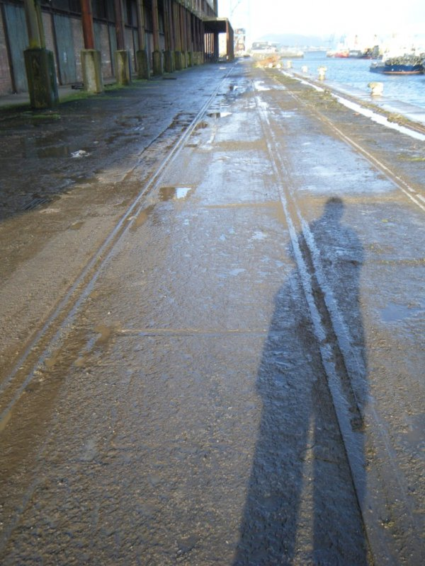 View of the rail tracks and cobble quay, during archaeological monitoring at James Warr Dock, Greenock