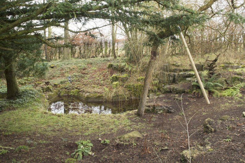 View of pond in garden.