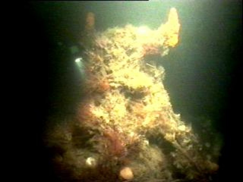 Diver photograph of Beagle steamship emergency steering post