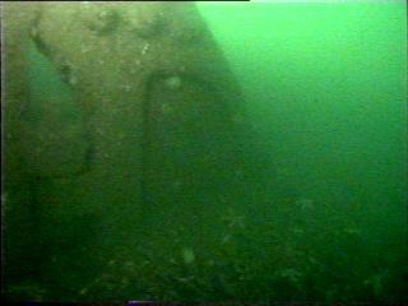 Diver photograph of rudder on HMS Breda