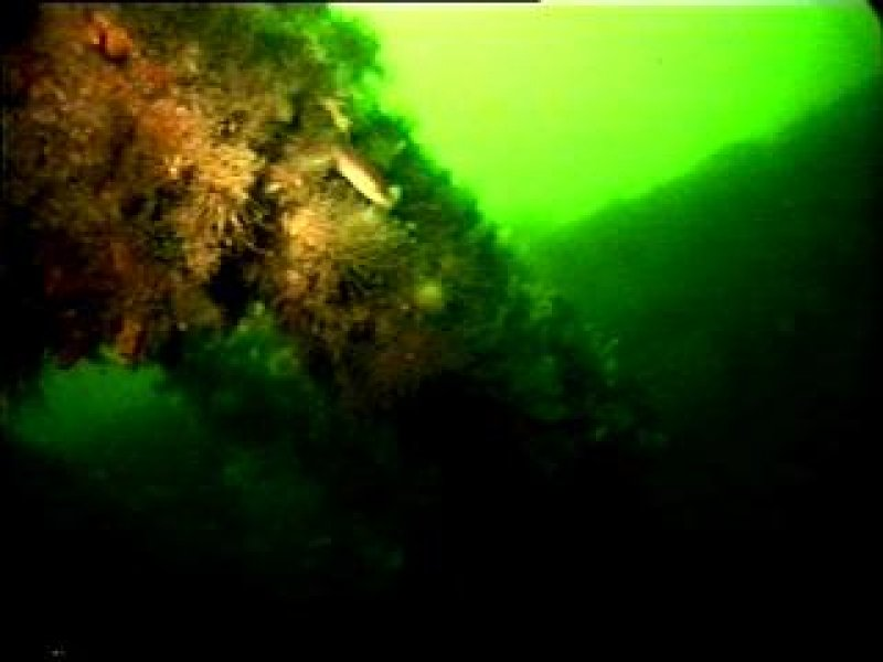 Diver photograph of Greenock structural remains