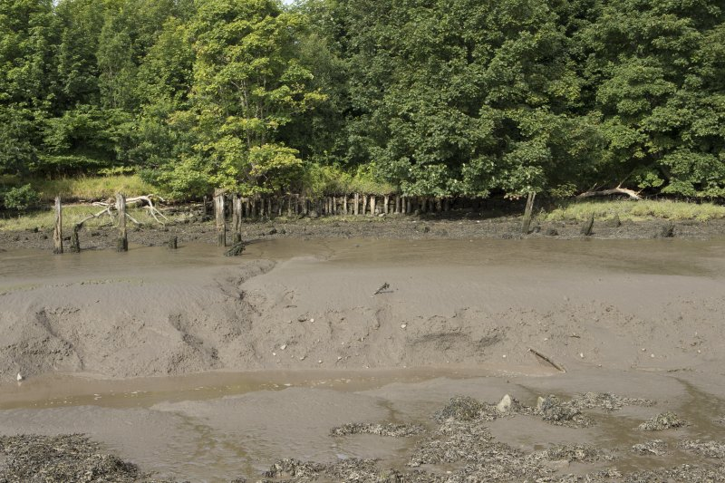 Forth estuary and remains of timber wharf or quay, view from east. The timber quayside deck onto which cargo to be shipped in and out would have been stored is now gone. All that remains are the eroded wooden piling structure that would have supported this wooden platform. The piling formation is still visible, with rows of wooden piles designed to give maximum compressive strength. Such wooden piles will decay naturally and so the piles we see here will probably have been replaced since the 18th century when the Kennetpans Distillery was at full production (prior to 1788).