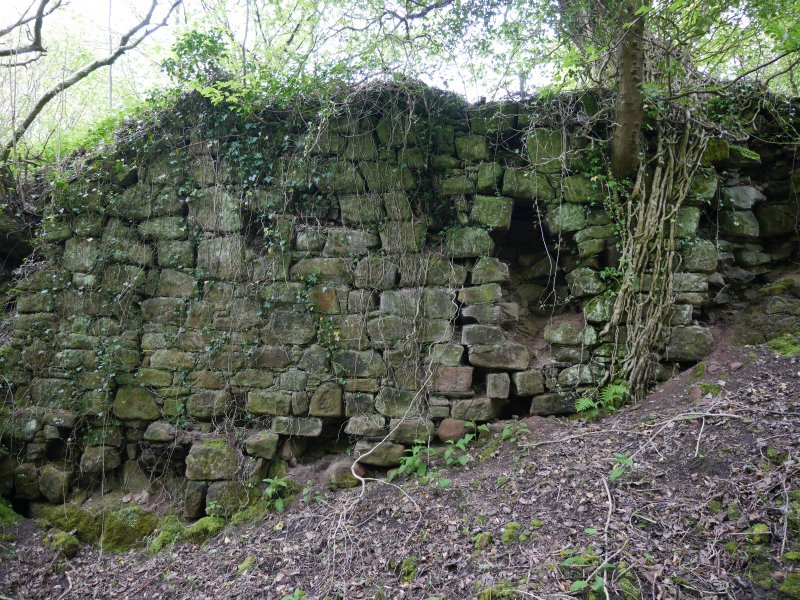 Detail view of the exterior of the north wall of the priory, taken from the north.