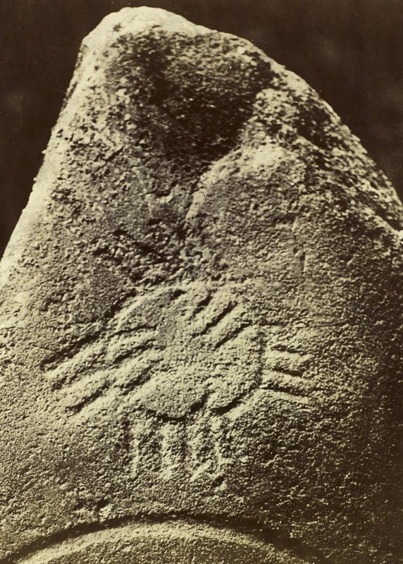 Detail of wheel ogham, Logie Elphinstone Pictish symbol stone no. 2.