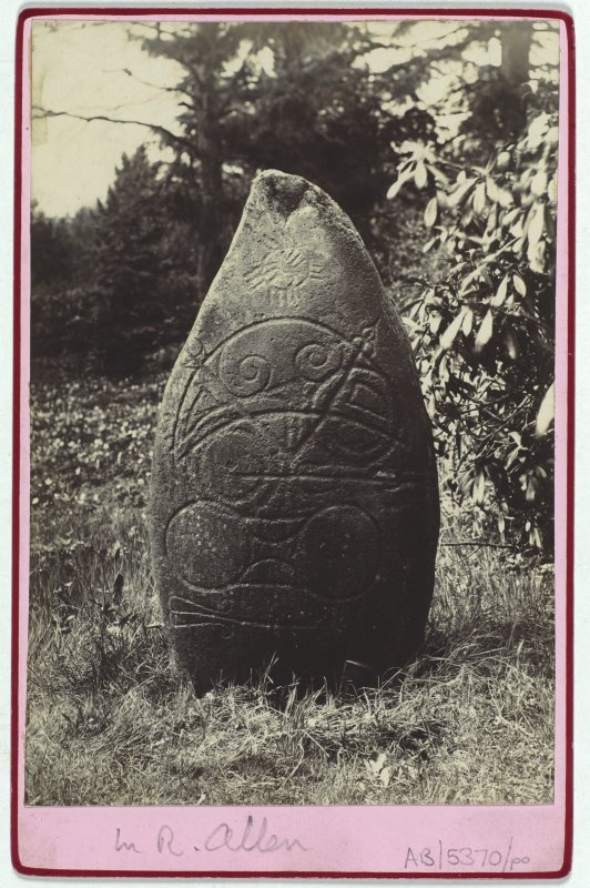 View of Logie Elphinstone Pictish symbol stone no.2.