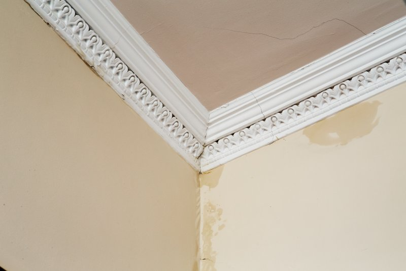 Interior. Ground floor. Detail of cornice in the main office..