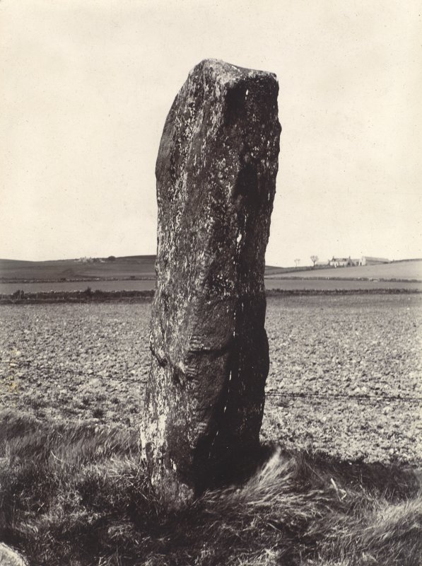 View of Auquhollie ogham inscribed stone.