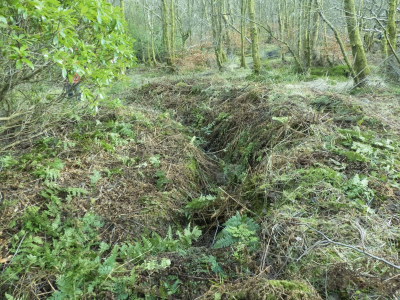 General view of trench