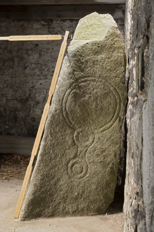 Pictish symbol stone, view of side face (including scale)