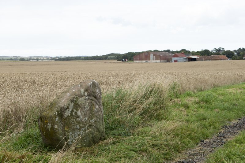 View of incised cross slab within the landscape looking north-east