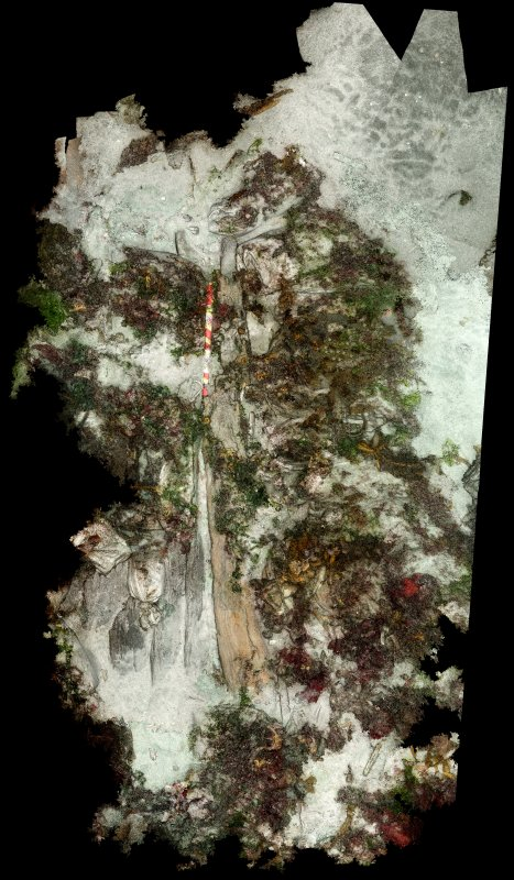 Galmisdale photogrammetry pointcloud orthoplan