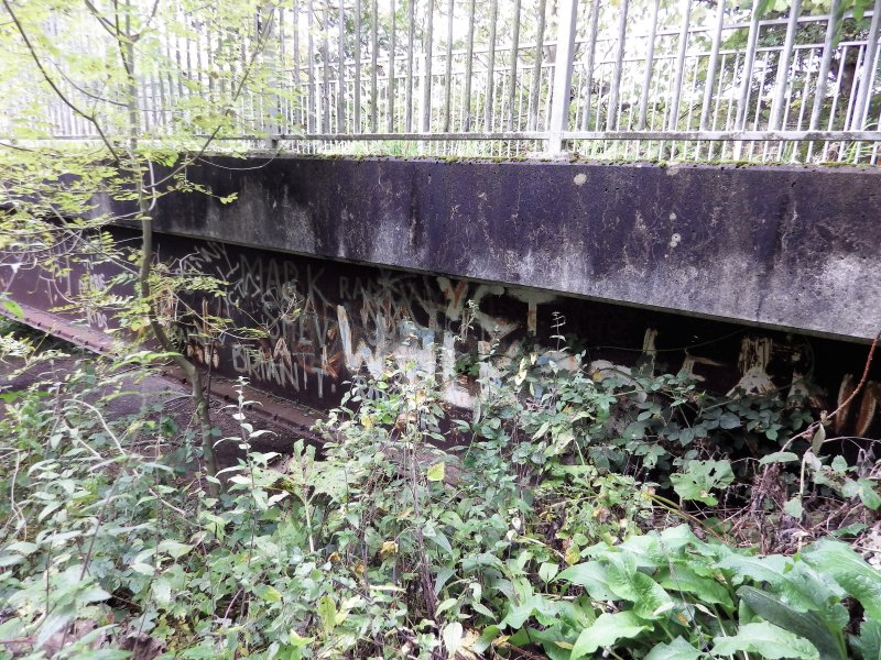 A view of some of the graffiti, largely obscured by vegetation, on the steel beam supports of the footbridge.