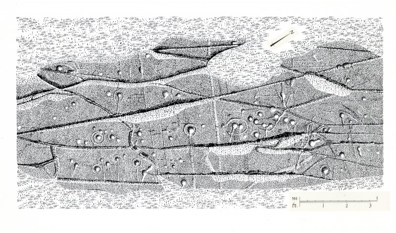 Publication drawing; cup and ring marked rock, Cairnbaan 1.
