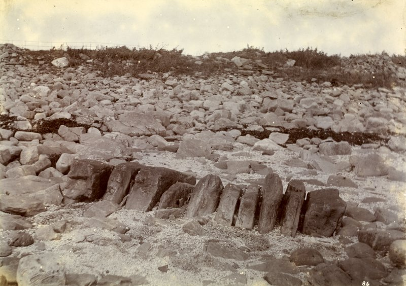 Possible photograph of White Gate Broch. Photograph in album of Caithness Brochs, at end of White Gate Broch series.
