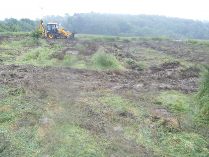 Archaeological evaluation, General wet site shot, Darnley Mains