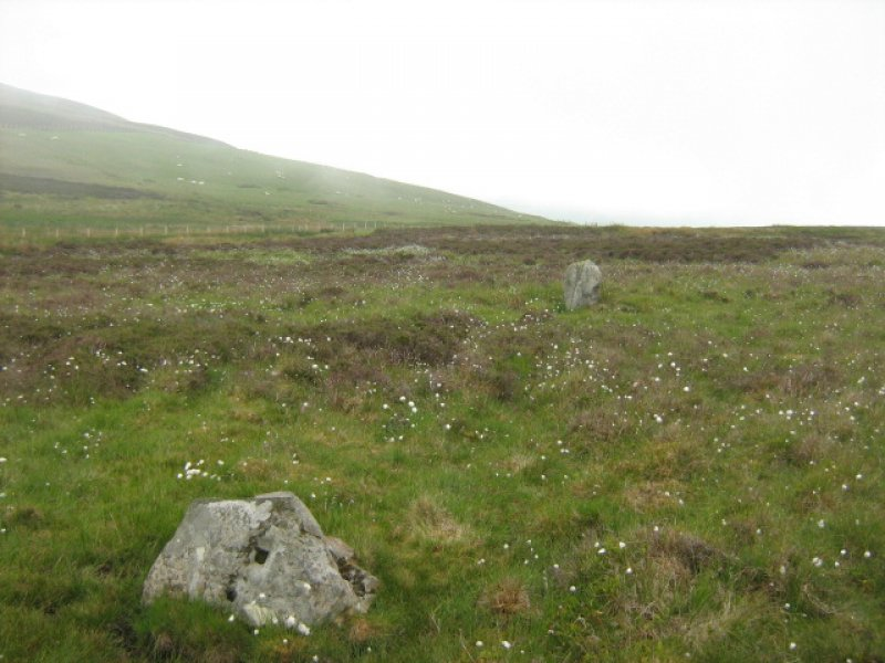 Field survey of planting areas and receptors, SM5518, standing stones, looking towards PDA to SE, from NW, Glen App Wind Farm, South of Ballantrae, South Ayrsh