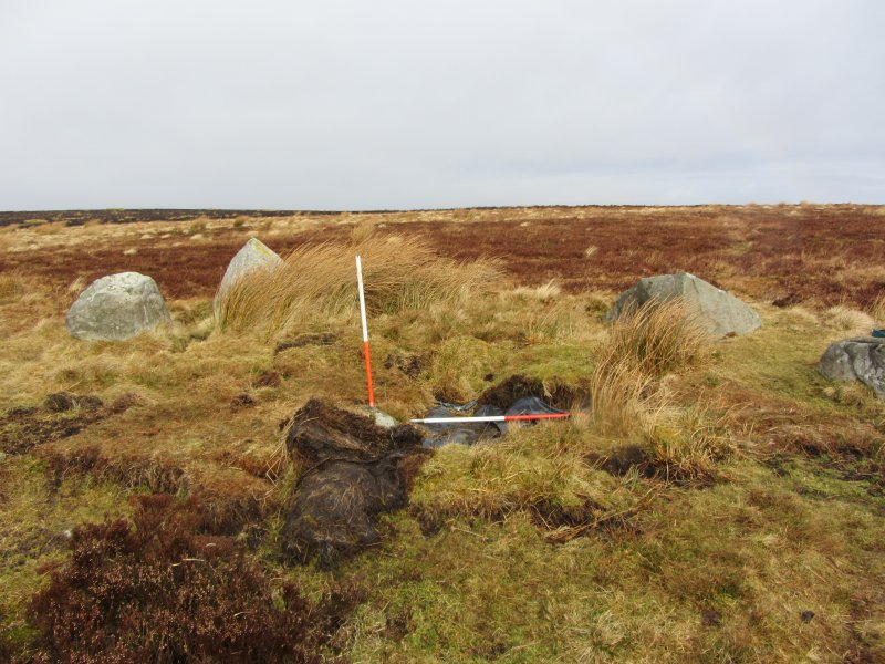 Archaeological evaluation, General view, Nine Stone Rig