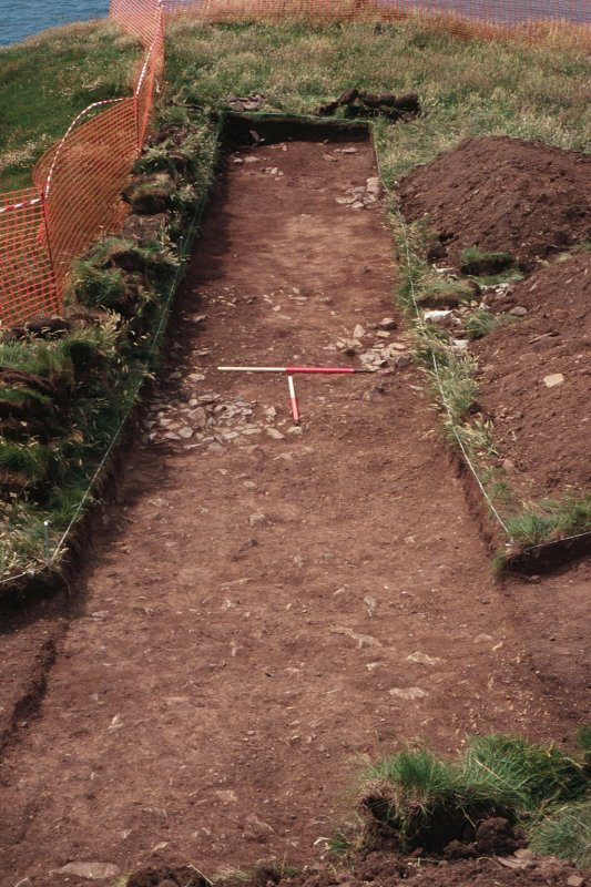 Archaeological evaluation, General view, Carghidown Castle