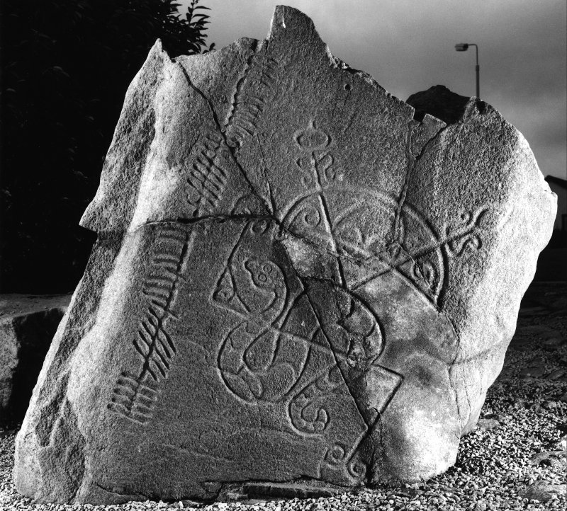 Brandsbutt, Inverurie, Pictish symbol stone. View from SE, dated 12 Sept. 1995.