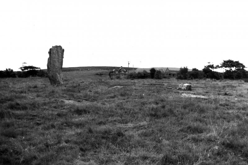 View of stone circle from S.