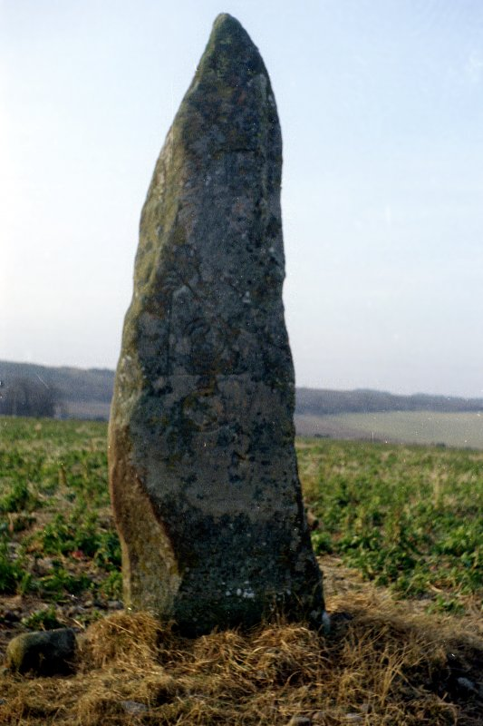 General view of symbol stone.